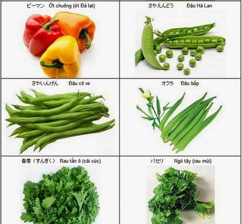học từ vựng tiếng nhật về rau quả